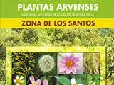 Plantas Arvenses