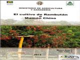 Cultivo de Rambután