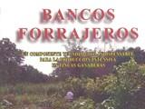 BANCOS FORRAJEROS