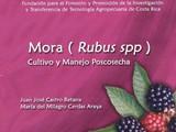 MORA RUBUS